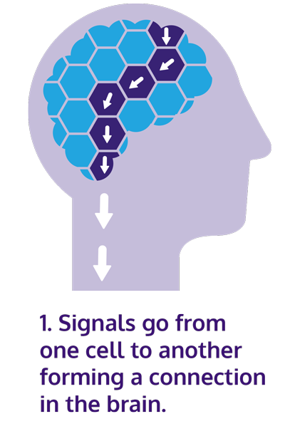 """Illustration of brain cell connection with text: """"signals go from one cell to another forming a connection in the brain."""