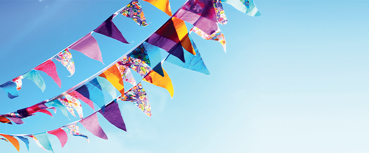 Banner image of bunting