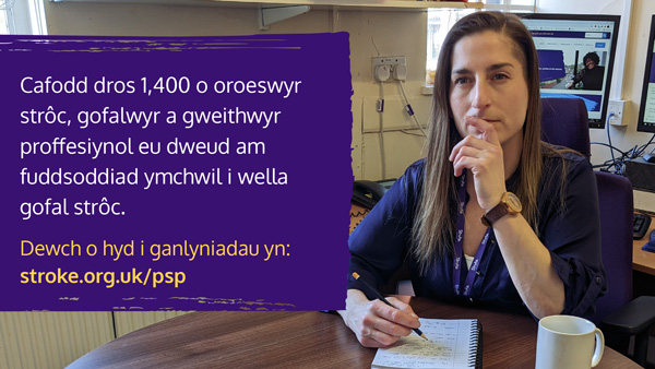 Photo of Priority setting partnership graphic in Welsh
