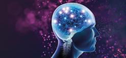 Amazing Brains promotional illustration of a brain