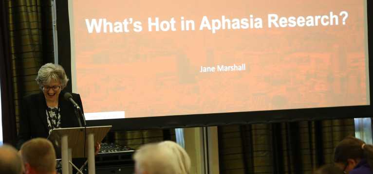 Aphasia research - Jane Marshall UKSA North 2017